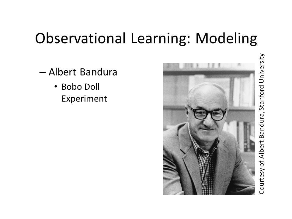 Observational Learning ACTagainstViolence.org