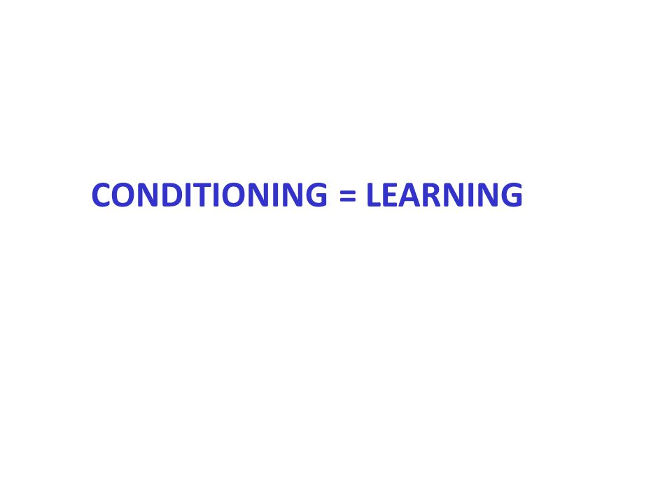 Classical Conditioning Meat PowderSalivation Meat PowderSalivationTone SalivationTone I.Classical Conditioning A.Acquisition