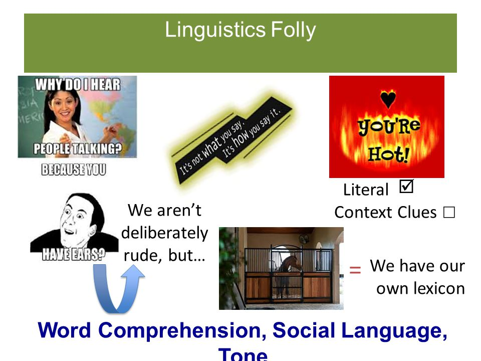 Linguistics Folly Word Comprehension, Social Language, Tone Literal We have our own lexicon We aren't deliberately rude, but… =  Context Clues ☐