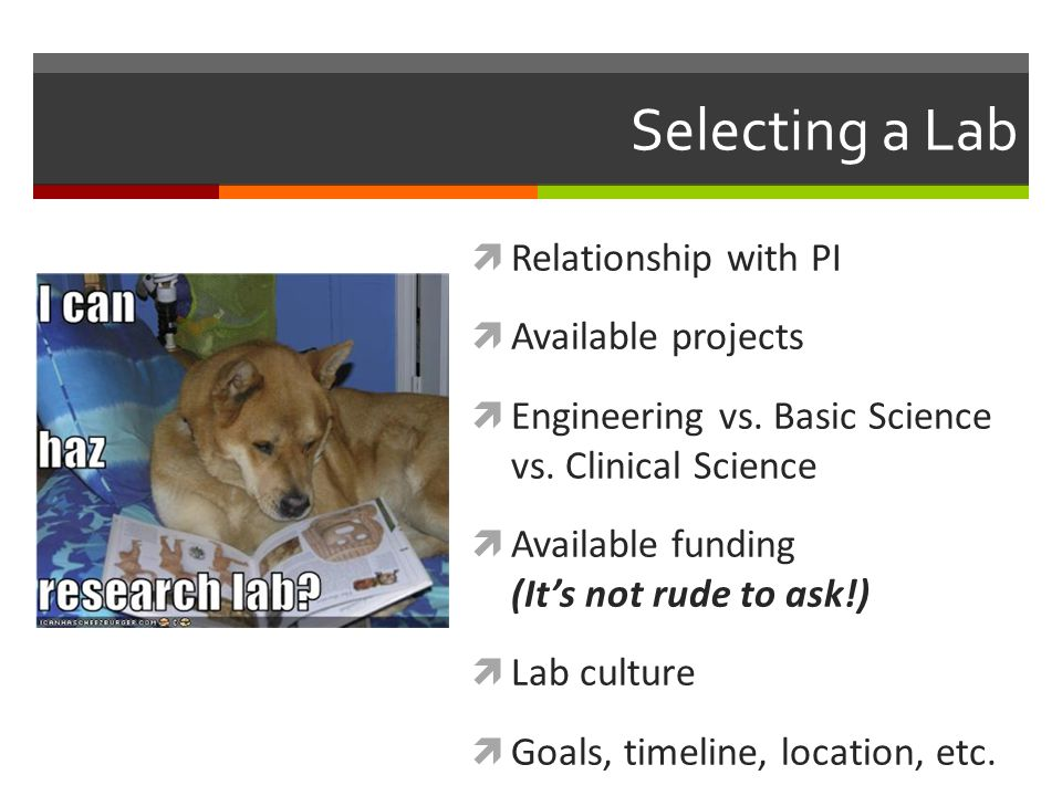 Selecting a Lab  Relationship with PI  Available projects  Engineering vs.