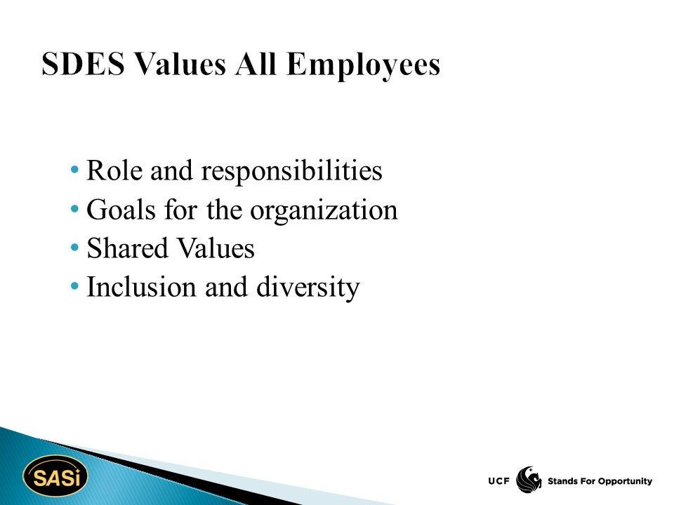 Role and responsibilities Goals for the organization Shared Values Inclusion and diversity