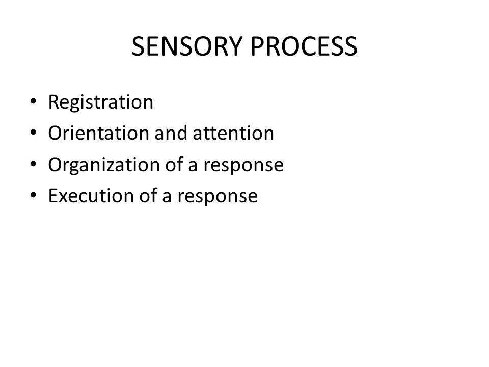 THE SENSORY SYSTEMS Proprioception Vestibular Tactile Visual Auditory Olfactory Gustatory