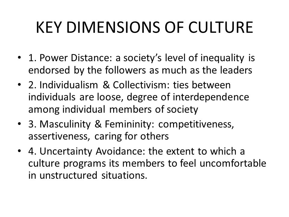 HOSFTEDE A – US: INDIVIDUALISTIC: VALUE NEW IDEAS AND INNOVATIONS, LEADERSHIP MORE PARTICIPATORY, INDIVIDUALS ARE CONFORTABLE COMMUNICATING VIA IMPERSONAL MEANS.