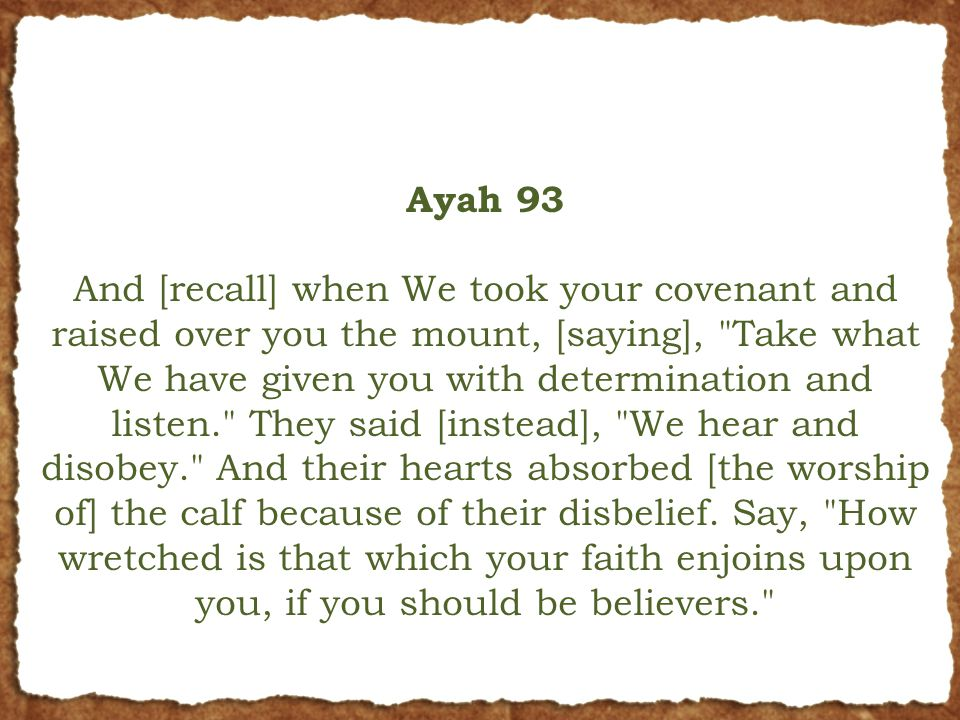 Ayah 93 And [recall] when We took your covenant and raised over you the mount, [saying], Take what We have given you with determination and listen. They said [instead], We hear and disobey. And their hearts absorbed [the worship of] the calf because of their disbelief.