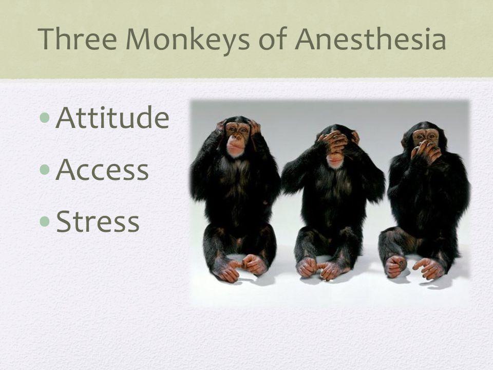 Three Monkeys of Anesthesia Attitude Access Stress