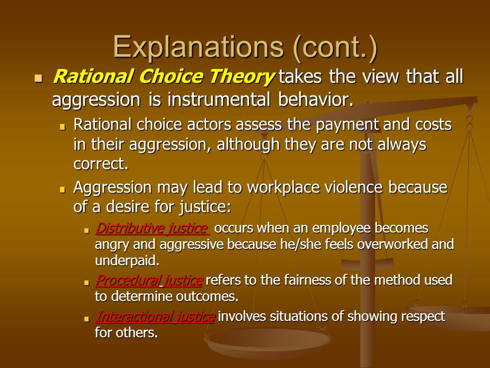 Explanations (cont.) Rational Choice Theory takes the view that all aggression is instrumental behavior.