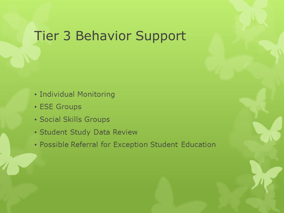 Tier 3 Behavior Support Individual Monitoring ESE Groups Social Skills Groups Student Study Data Review Possible Referral for Exception Student Education
