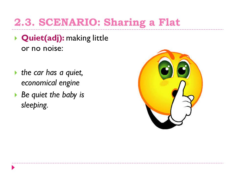 2.3. SCENARIO: Sharing a Flat  Quiet(adj): making little or no noise:  the car has a quiet, economical engine  Be quiet the baby is sleeping.