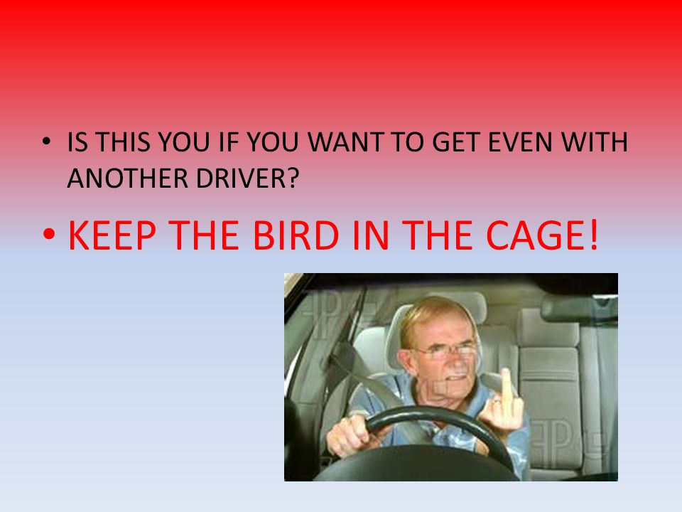 IS THIS YOU IF YOU WANT TO GET EVEN WITH ANOTHER DRIVER? KEEP THE BIRD IN THE CAGE!