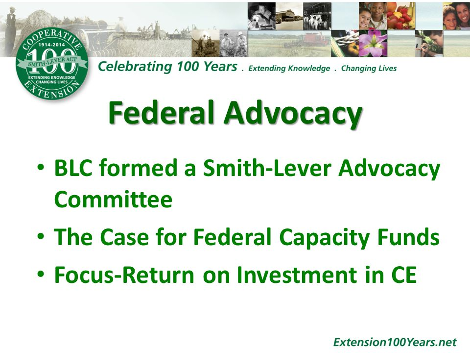 Federal Advocacy BLC formed a Smith-Lever Advocacy Committee The Case for Federal Capacity Funds Focus-Return on Investment in CE