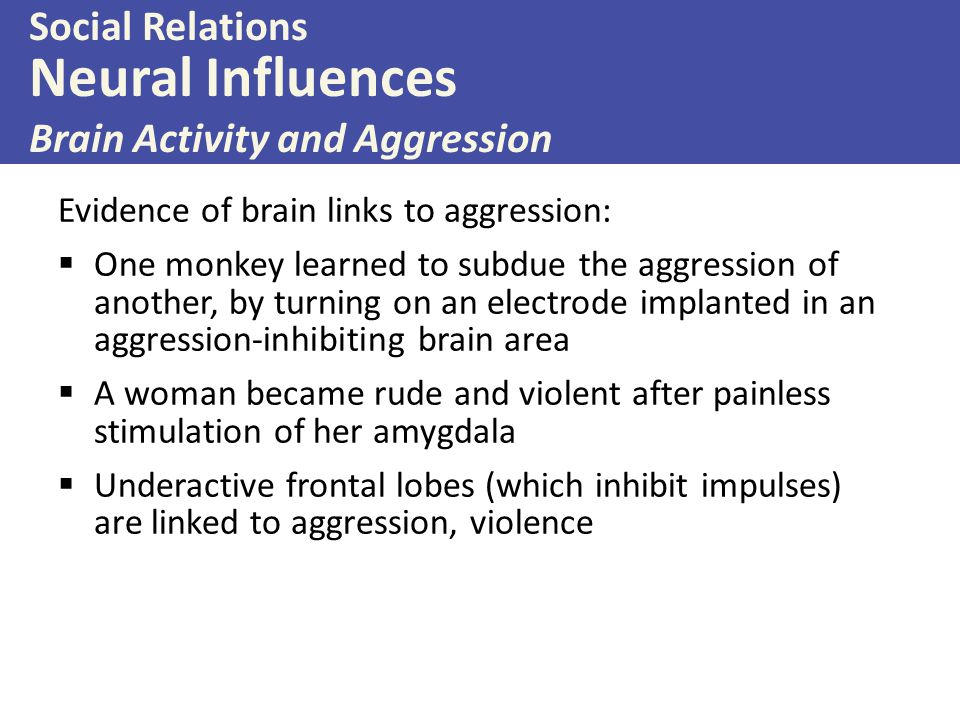 Evidence of brain links to aggression:  One monkey learned to subdue the aggression of another, by turning on an electrode implanted in an aggression