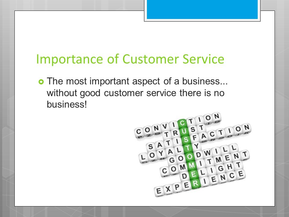 Importance of Customer Service  The most important aspect of a business... without good customer service there is no business!
