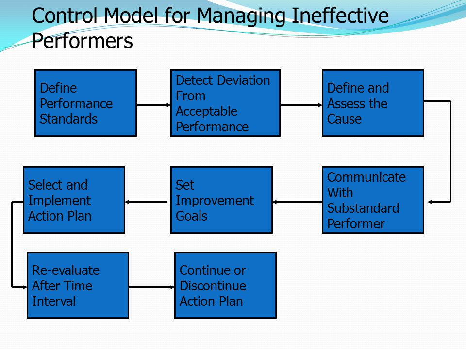 Define Performance Standards Select and Implement Action Plan Set Improvement Goals Communicate With Substandard Performer Detect Deviation From Accep