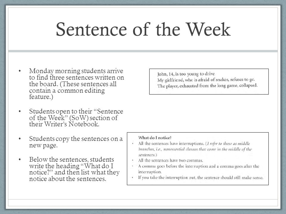 Sentence of the Week Monday morning students arrive to find three sentences written on the board.