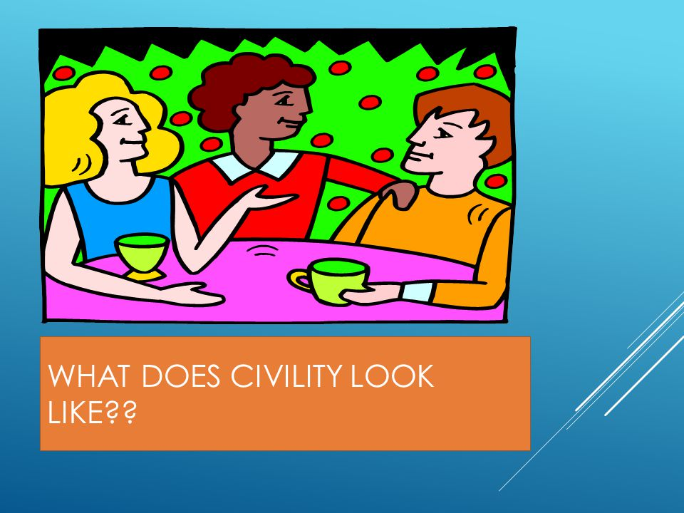 WHAT DOES CIVILITY LOOK LIKE??