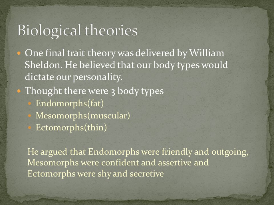 One final trait theory was delivered by William Sheldon. He believed that our body types would dictate our personality. Thought there were 3 body type
