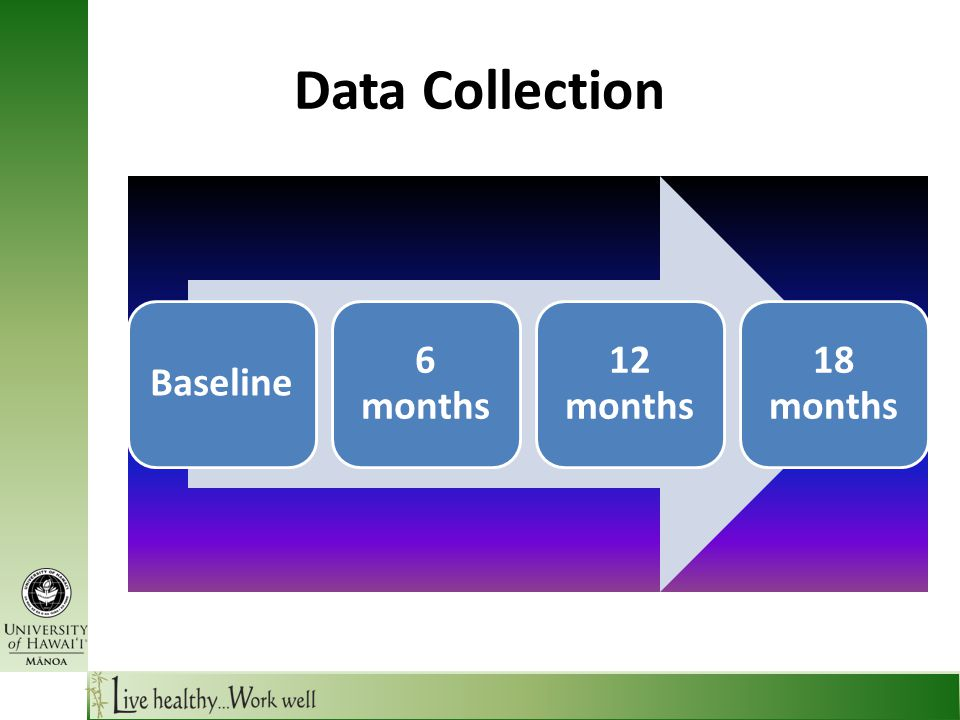 Data Collection Baseline 6 months 12 months 18 months