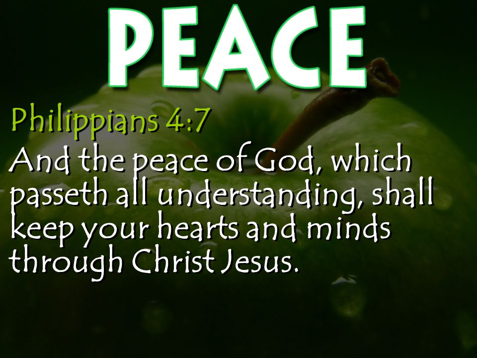Philippians 4:7 And the peace of God, which passeth all understanding, shall keep your hearts and minds through Christ Jesus.