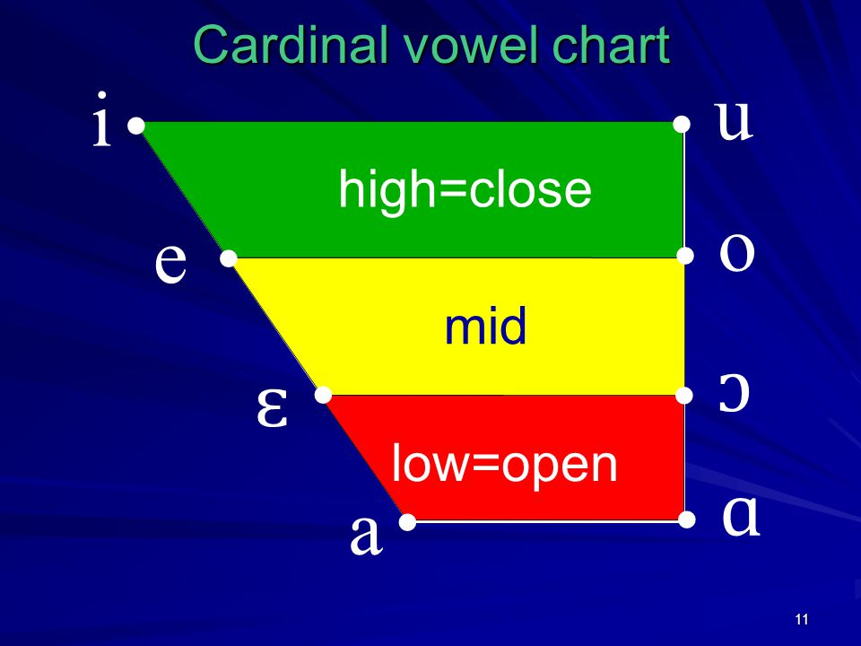 11 low=open mid high=close Cardinal vowel chart i e ɛ a u o ɔ ɑ