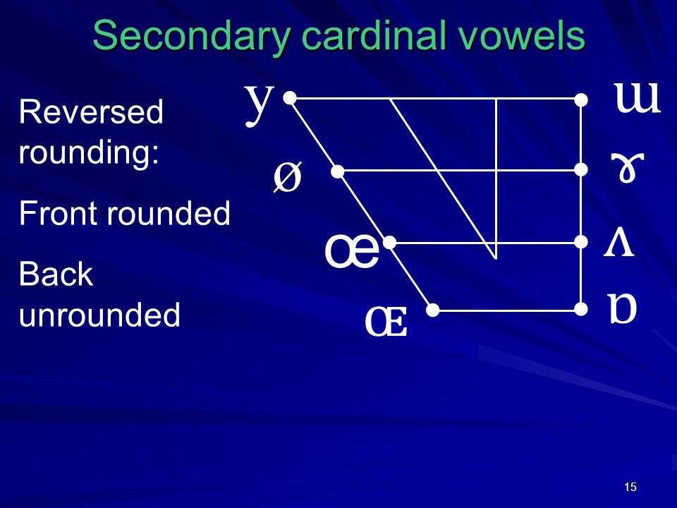 15 Secondary cardinal vowels y ø œ ɶ ɯ ɤ ʌ ɒ Reversed rounding: Front rounded Back unrounded