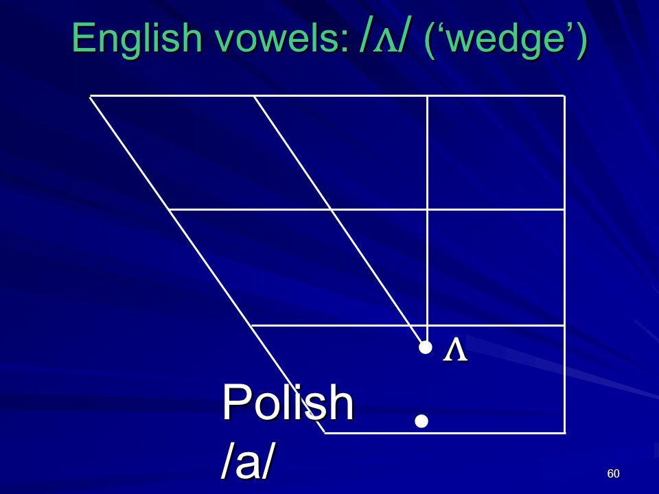 60 English vowels: / ʌ / ('wedge') ʌ Polish /a/