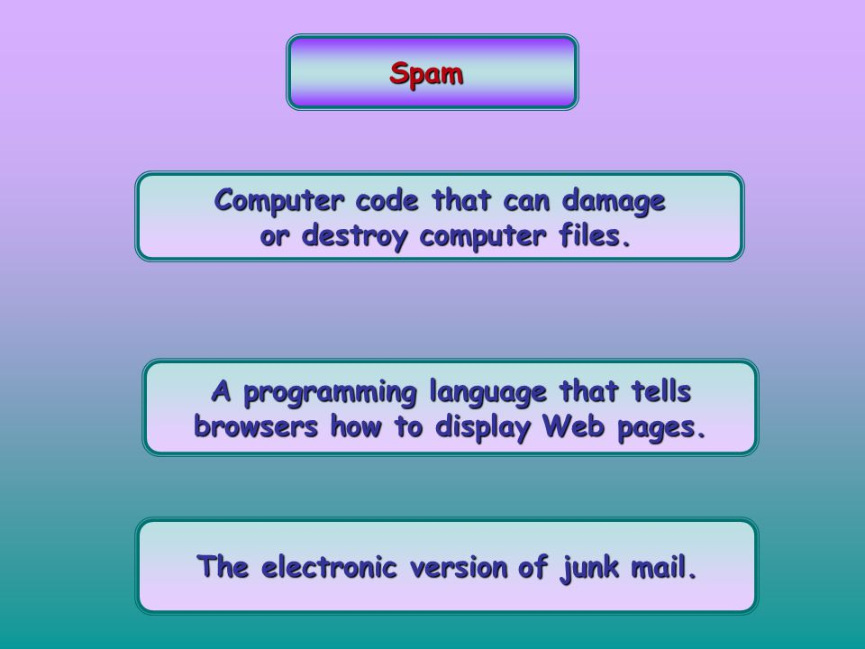 Spam Computer code that can damage or destroy computer files. or destroy computer files. A programming language that tells browsers how to display Web