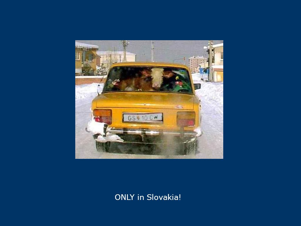 ONLY in Slovakia!