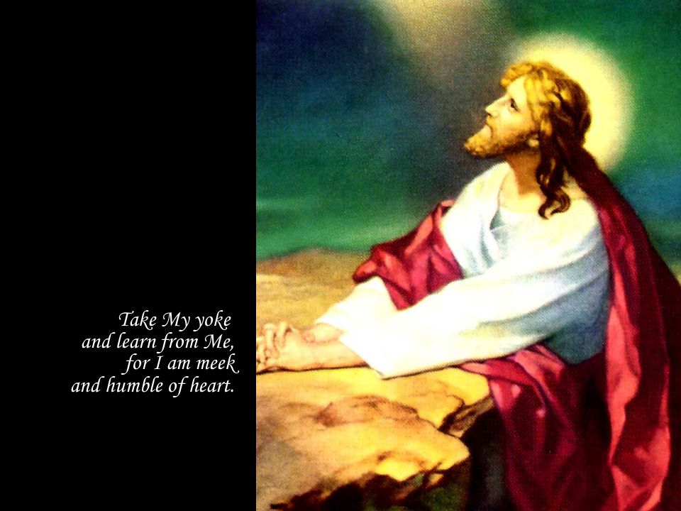 Take My yoke and learn from Me, for I am meek and humble of heart.