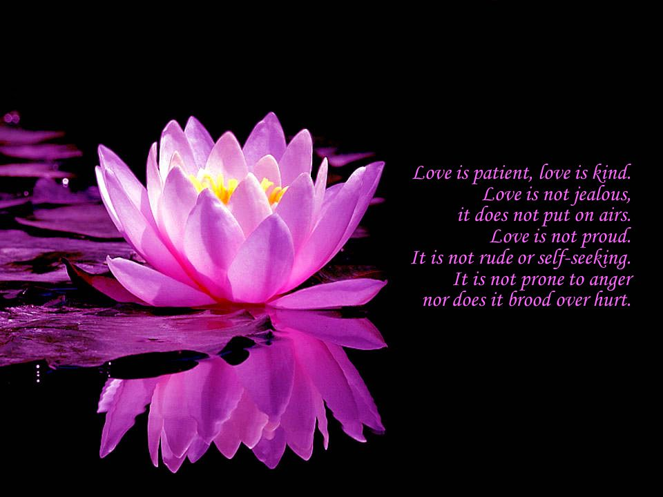 Love is patient, love is kind. Love is not jealous, it does not put on airs.