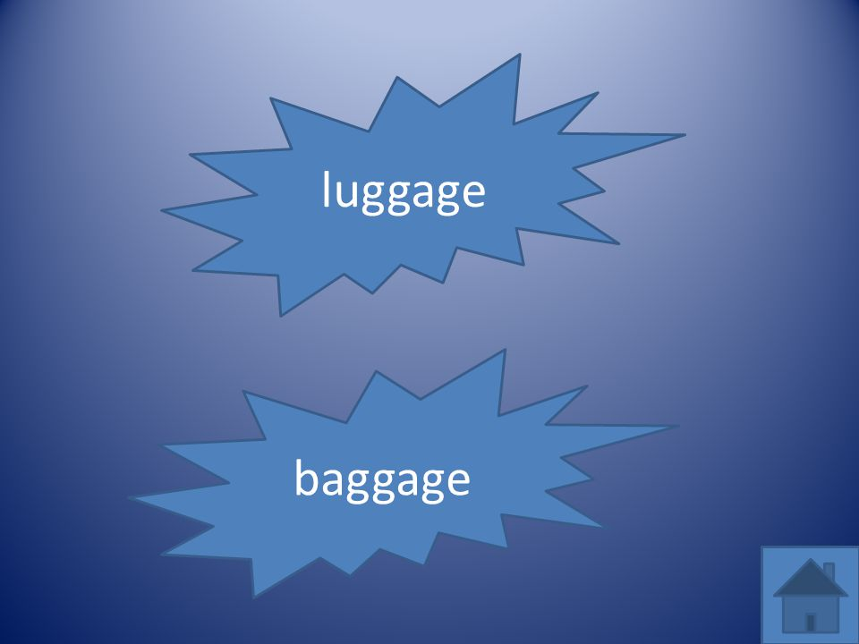 baggage luggage