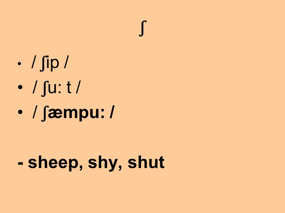 ʃ / ʃ ip / / ʃ u: t / / ʃ æmpu: / - sheep, shy, shut