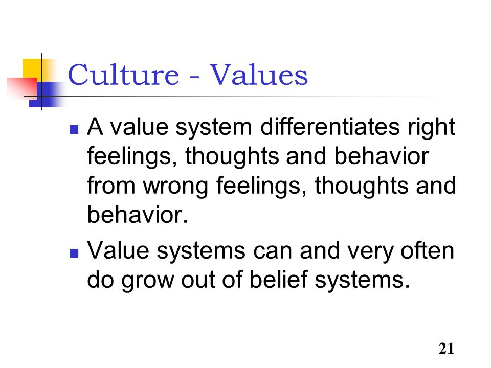 21 Culture - Values A value system differentiates right feelings, thoughts and behavior from wrong feelings, thoughts and behavior.