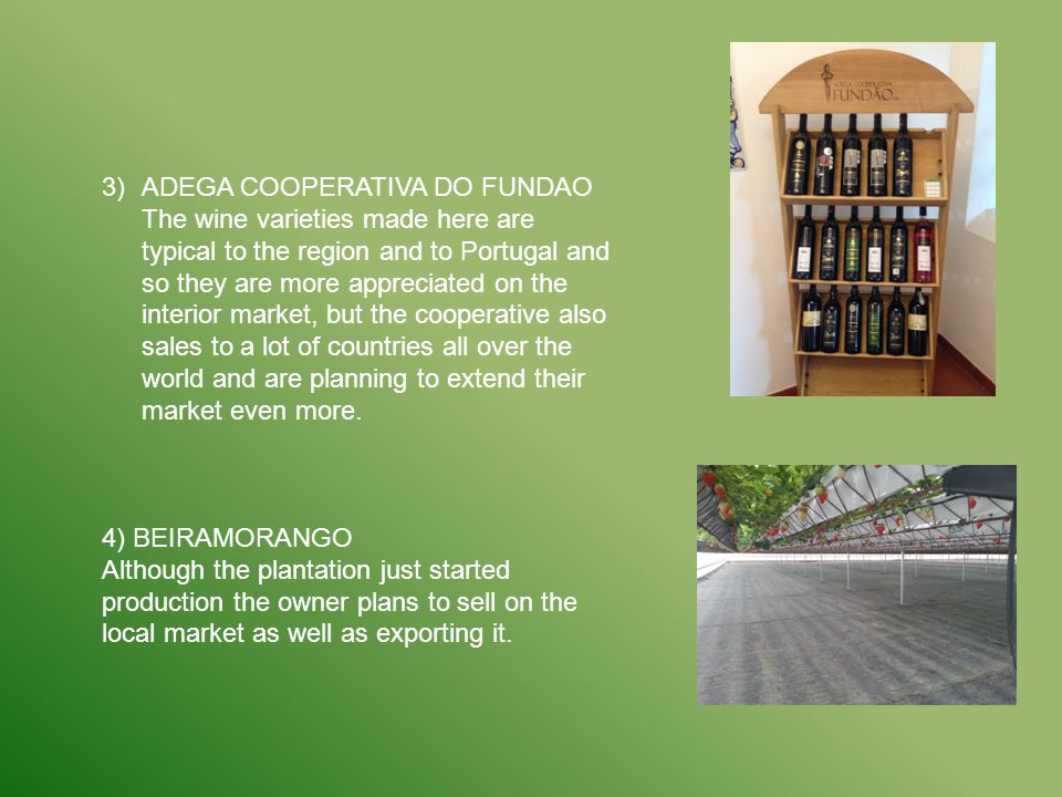 3)ADEGA COOPERATIVA DO FUNDAO The wine varieties made here are typical to the region and to Portugal and so they are more appreciated on the interior