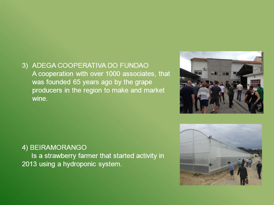 3)ADEGA COOPERATIVA DO FUNDAO A cooperation with over 1000 associates, that was founded 65 years ago by the grape producers in the region to make and