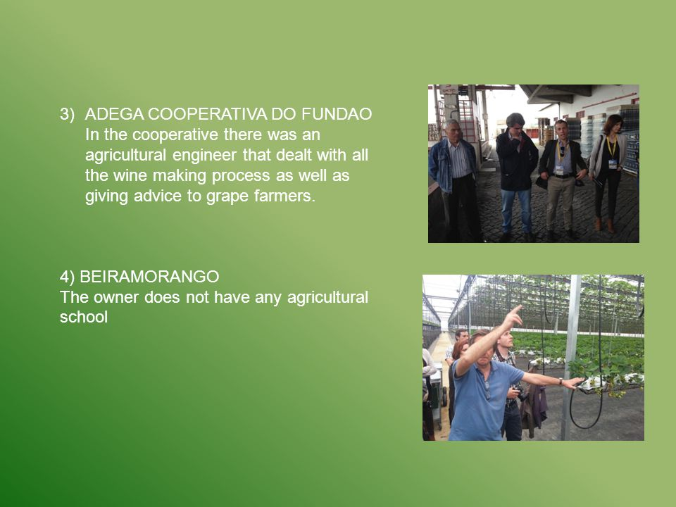 3)ADEGA COOPERATIVA DO FUNDAO In the cooperative there was an agricultural engineer that dealt with all the wine making process as well as giving advi