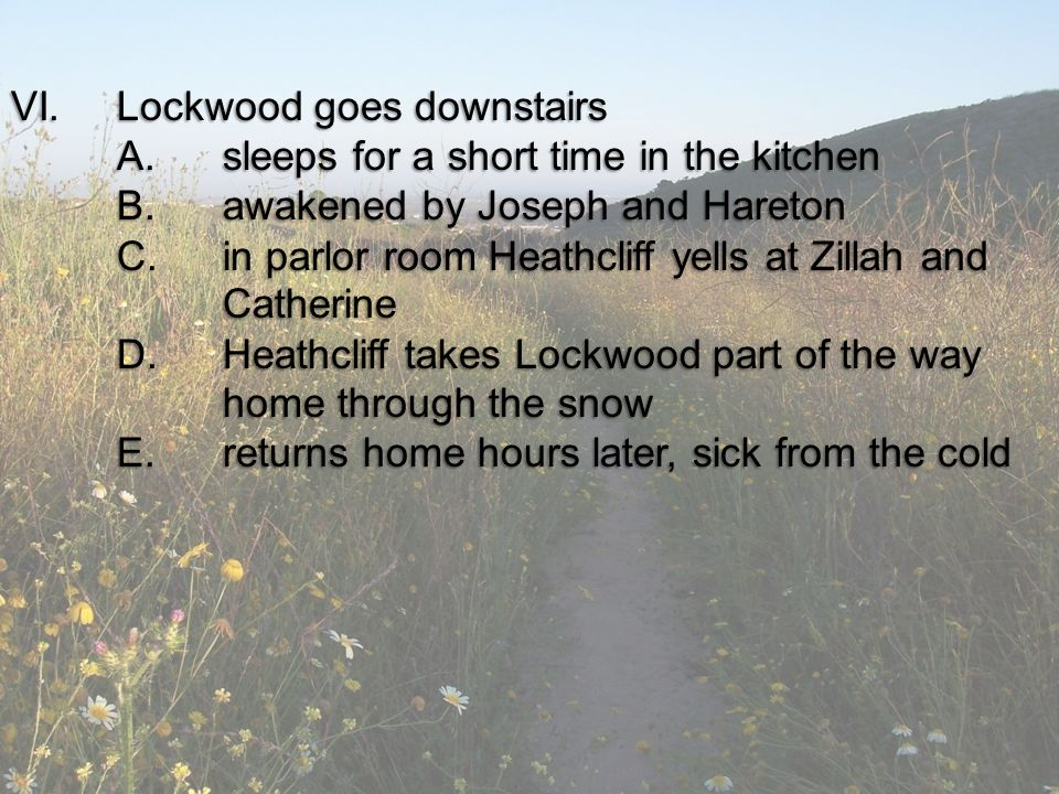 VI.Lockwood goes downstairs A.sleeps for a short time in the kitchen B.awakened by Joseph and Hareton C.in parlor room Heathcliff yells at Zillah and Catherine D.Heathcliff takes Lockwood part of the way home through the snow E.returns home hours later, sick from the cold