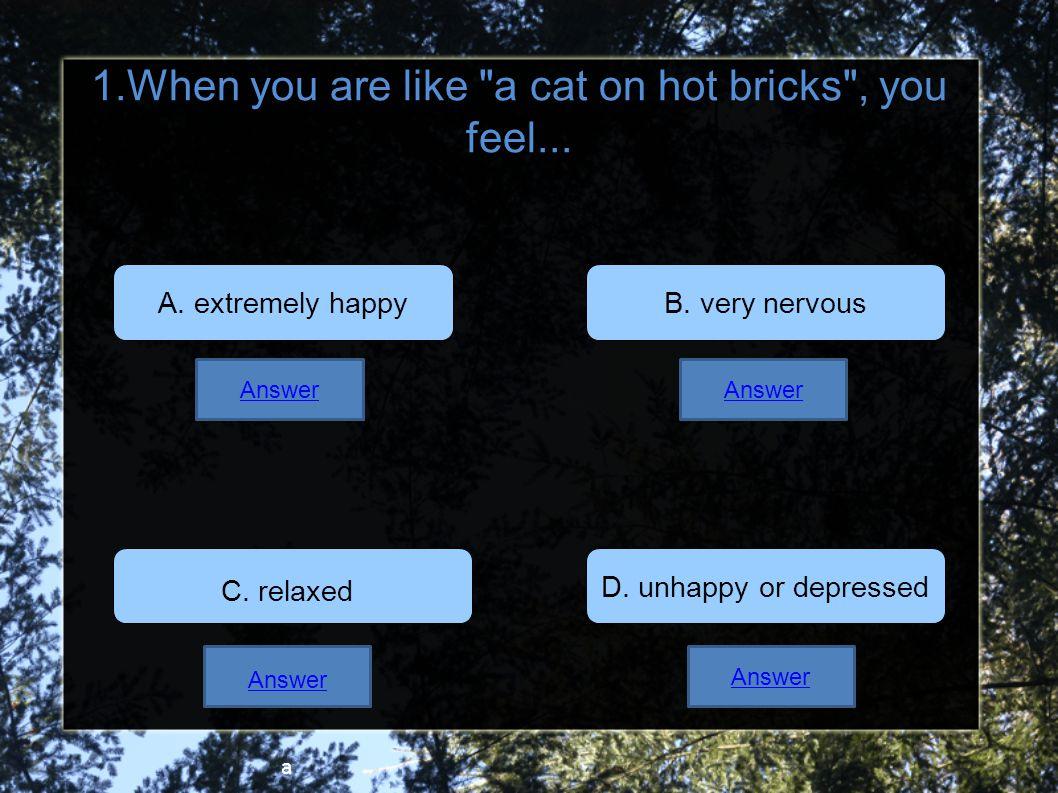 Quiz on animal idioms!!!