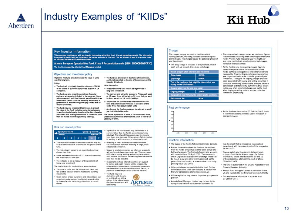13 Industry Examples of KIIDs