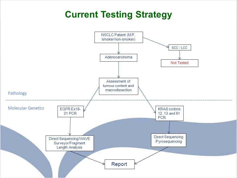 Current Testing Strategy Assessment of tumour content and macrodissection SCC / LCC NSCLC Patient (M/F, smoker/non-smoker) Adenocarcinoma EGFR Ex18- 2