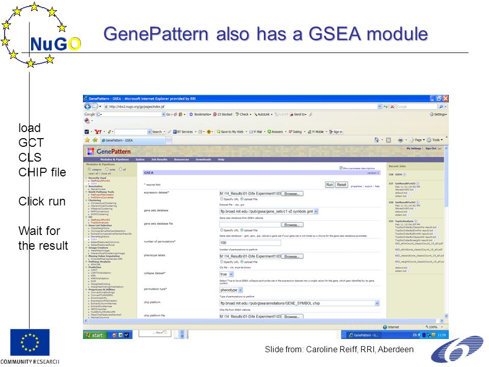 load GCT CLS CHIP file Click run Wait for the result Slide from: Caroline Reiff, RRI, Aberdeen GenePattern also has a GSEA module