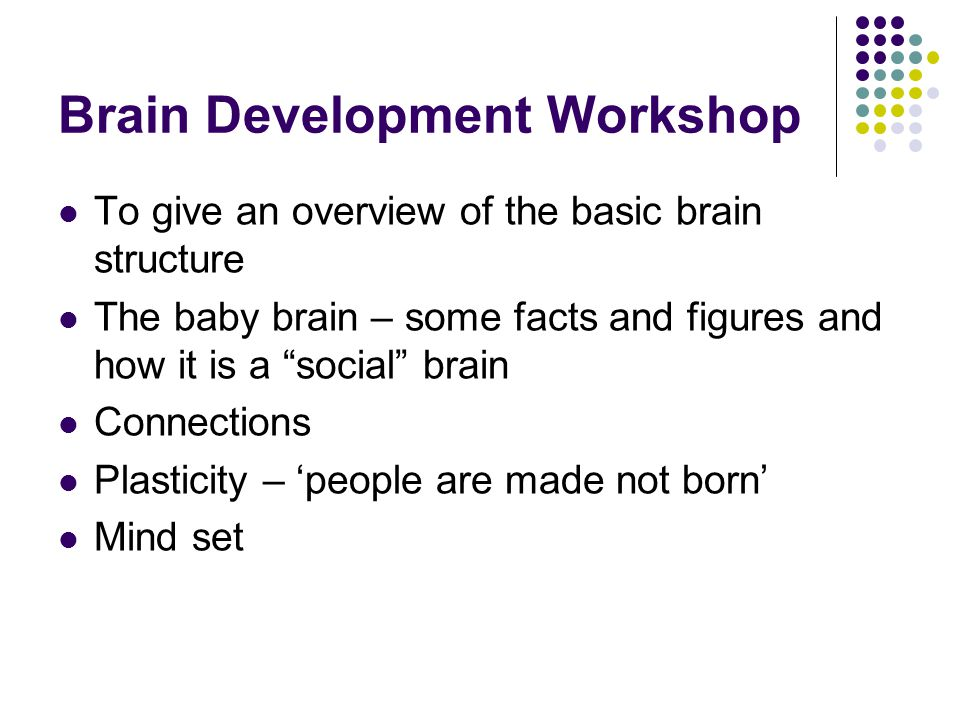 Brain Development Workshop To give an overview of the basic brain structure The baby brain – some facts and figures and how it is a social brain Connections Plasticity – 'people are made not born' Mind set