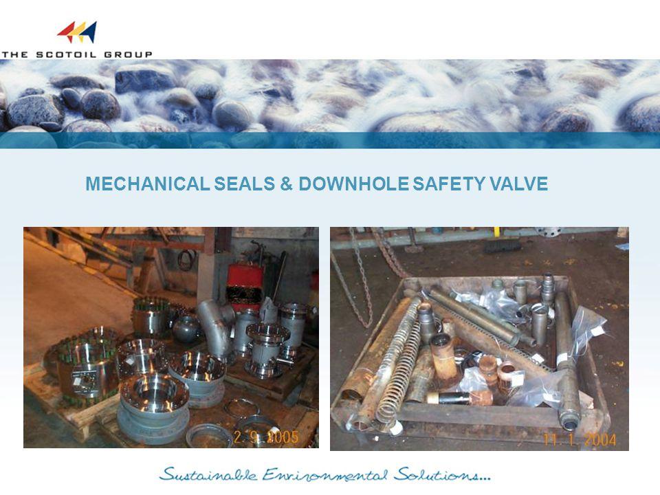 MECHANICAL SEALS & DOWNHOLE SAFETY VALVE