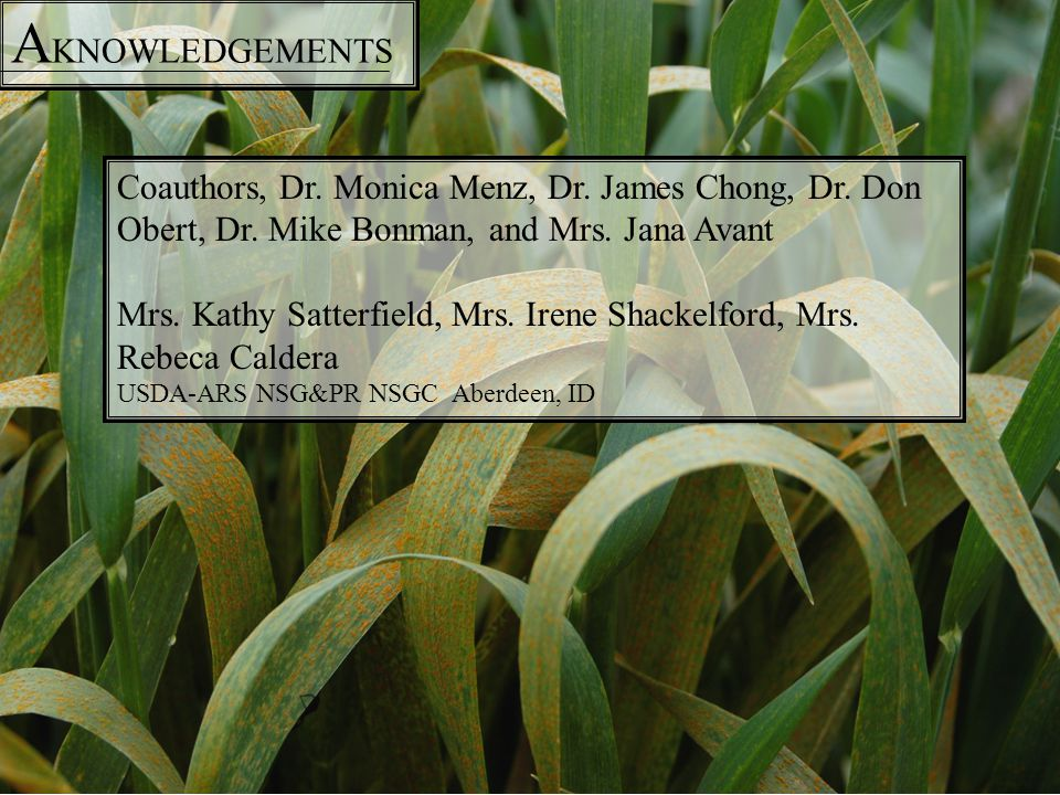 A KNOWLEDGEMENTS Coauthors, Dr. Monica Menz, Dr. James Chong, Dr. Don Obert, Dr. Mike Bonman, and Mrs. Jana Avant Mrs. Kathy Satterfield, Mrs. Irene S