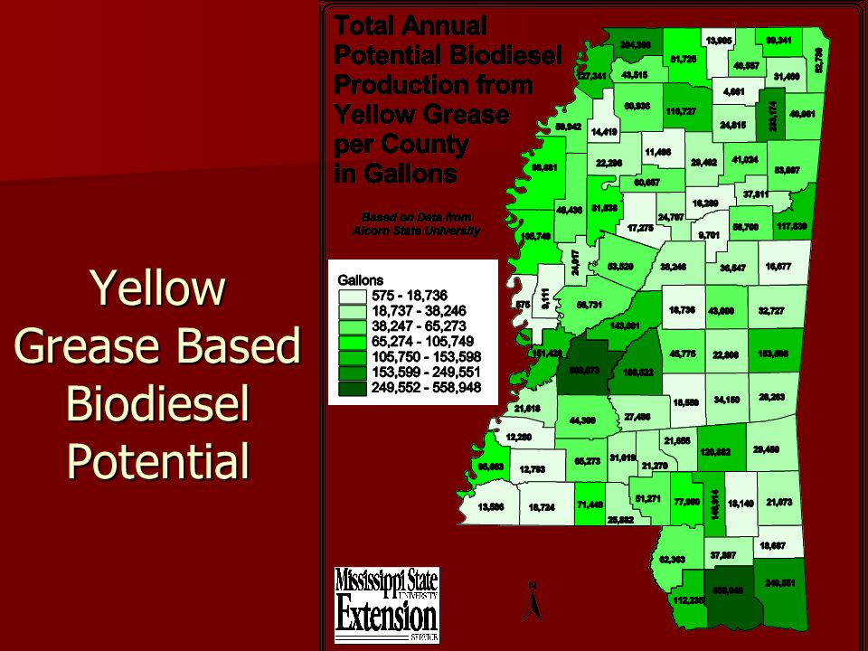 Yellow Grease Based Biodiesel Potential