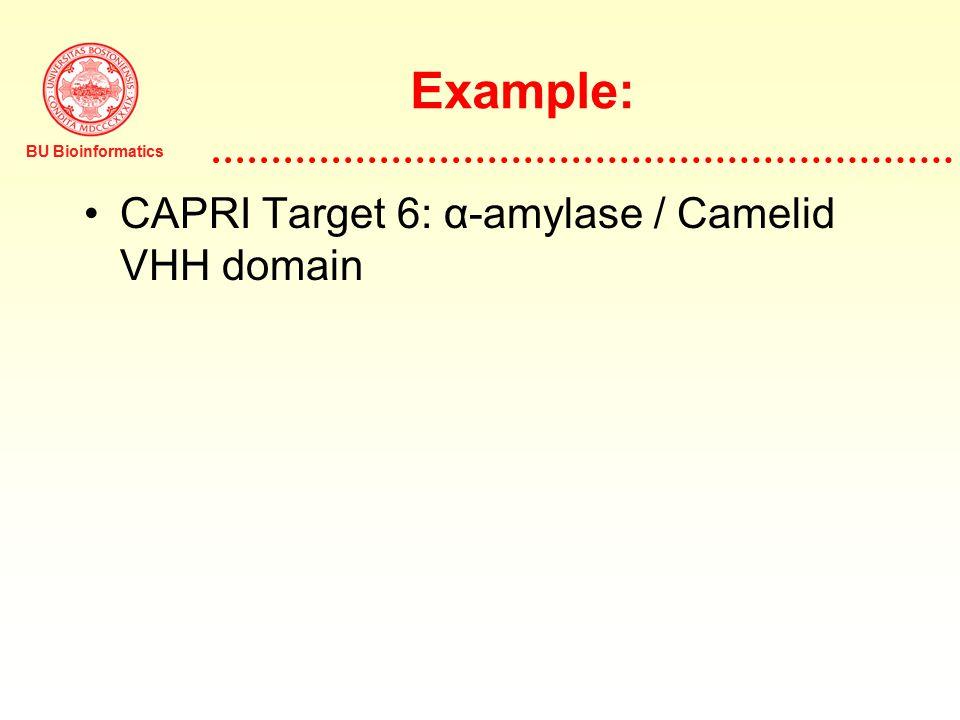 BU Bioinformatics Example: CAPRI Target 6: α-amylase / Camelid VHH domain