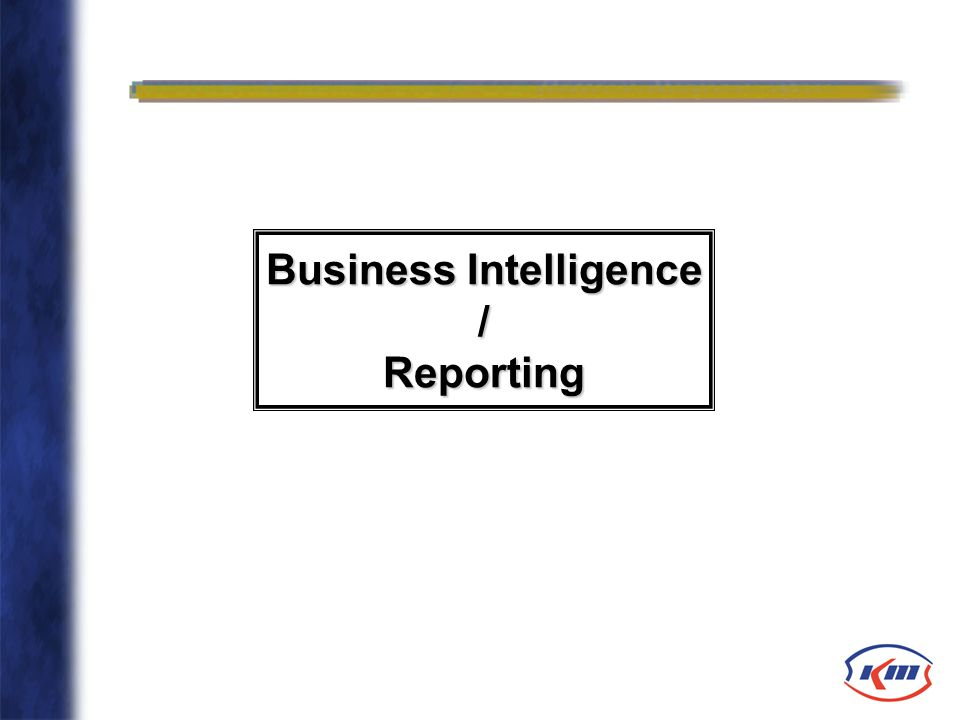 Business Intelligence / Reporting