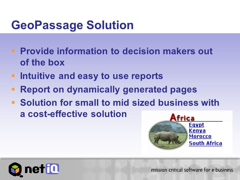 GeoPassage Solution  Provide information to decision makers out of the box  Intuitive and easy to use reports  Report on dynamically generated pages  Solution for small to mid sized business with a cost-effective solution