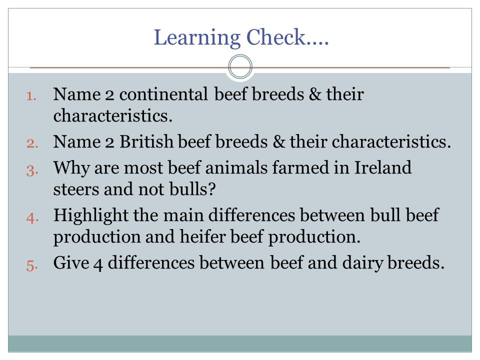 Learning Check.... 1. Name 2 continental beef breeds & their characteristics.
