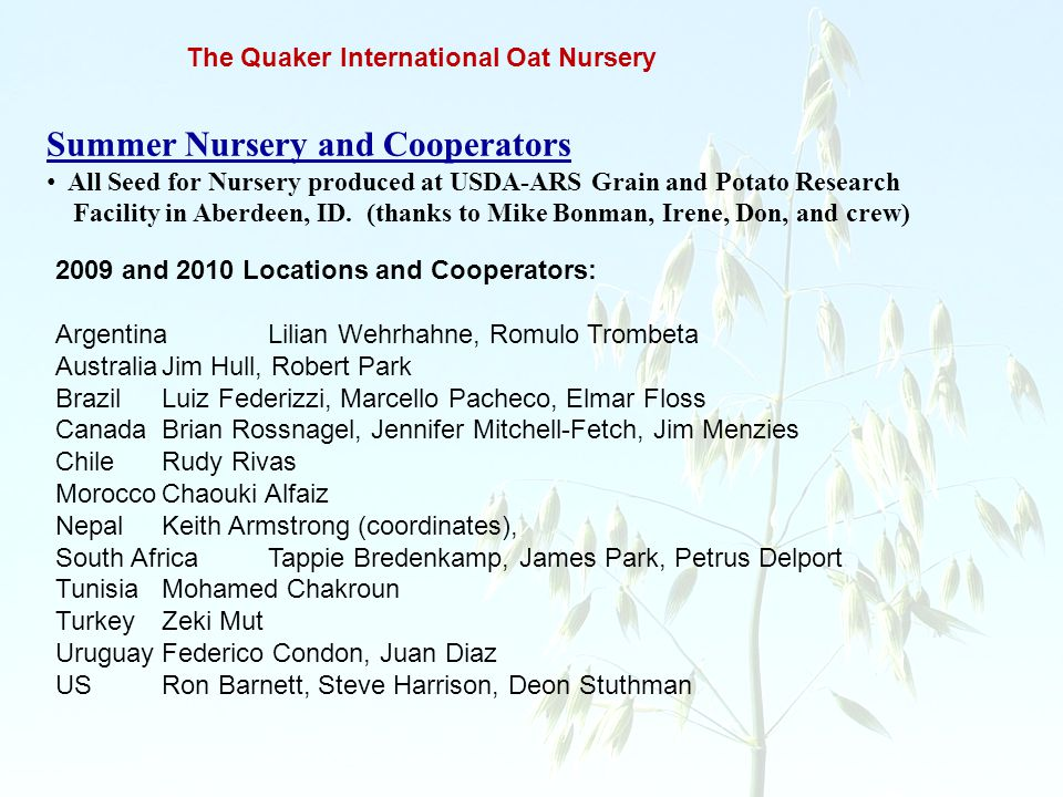 The Quaker International Oat Nursery Summer Nursery and Cooperators All Seed for Nursery produced at USDA-ARS Grain and Potato Research Facility in Ab