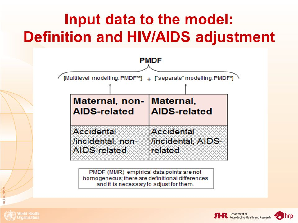 Input data to the model: Definition and HIV/AIDS adjustment 08_XXX_MM29